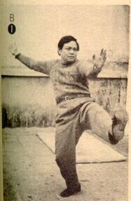 cheng tin hung kick with heel
