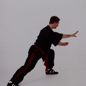 Wudang Tai Chi long form Neil Rosiak
